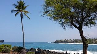 ハワイ2017 - コピー.jpg